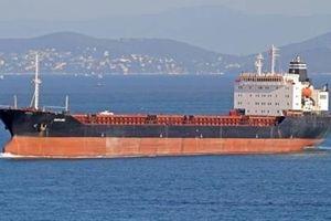Động viên Syria, Crimea thề chuyển dầu cho Tổng thống Assad