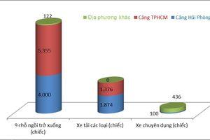 99% ô tô con nhập khẩu về Việt Nam qua cảng Hải Phòng và TPHCM