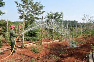 'Hơi thở nông thôn mới' ở Gia Lai