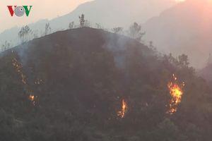 Cháy rừng ở Điện Biên, Lai Châu và Yên Bái, cả nghìn người dập lửa