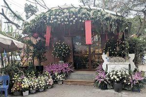 Bí ẩn ngôi miếu 'cô Mai Hoa' ở Hà Nội