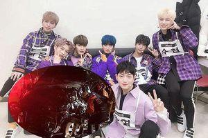 Nhóm nhạc Hàn Quốc bị tai nạn, quản lý qua đời và 4 thành viên bị thương