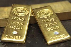 Giá vàng hôm nay 22.4: Vàng miếng giảm, thế giới đứng yên chờ cơ hội
