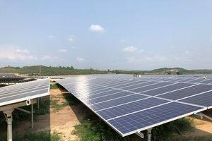 Điện mặt trời 'chạy đua' hưởng ưu đãi