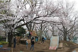 Sân chơi phiêu lưu phong cách Nhật Bản tại KĐT Ecopark – thử thách 'lạ' cho các bé dịp hè này