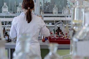 Các nhà khoa học phát triển nhựa sinh học không độc hại