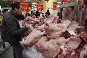 Giá thịt lợn tại Trung Quốc có thể tăng 70% trong thời gian tới