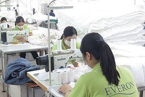 Everpia (EVE) đặt mục tiêu lợi nhuận 100 tỷ đồng