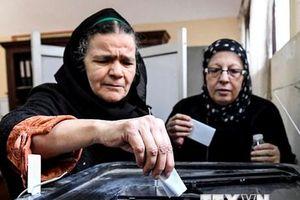 Đông đảo cử tri Ai Cập tham gia ngày cuối trưng cầu sửa đổi Hiến pháp