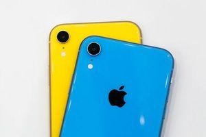 5 ưu, nhược điểm của iPhone Xr