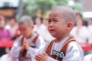 'Cưng muốn xỉu' trước 50 sắc thái của các chú tiểu ở Hàn Quốc trong ngày lễ Phật đản