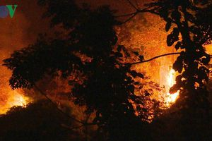 Hàng trăm người dập đám cháy rừng lớn trong đêm ở Bảo Thắng, Lào Cai