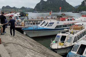Giá vé tàu Cô Tô đột ngột tăng cao trước dịp nghỉ lễ