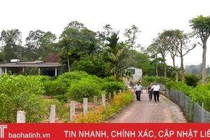 Về Hà Tĩnh, ngắm vườn mẫu trên quê hương Tổng Bí thư Hà Huy Tập