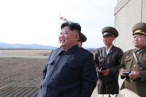Vũ khí mới của Triều Tiên và thông điệp với Tổng thống Putin