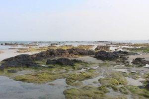 Khám phá điểm du lịch dã ngoại, 'trốn nắng' lý tưởng ở Quảng Trị