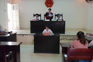 29 hộ dân kiện UBND huyện Hiệp Hòa: Tòa án làm 'phật lòng' hai bên