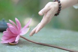 4 quy tắc theo triết lý nhà Phật để sống ung tự tại, hạnh phúc đến cuối đời