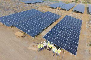 InfraCo Asia đẩy mạnh đầu tư năng lượng tái tạo Việt Nam