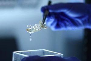 Đức tạo ra các bộ phận cơ thể người từ công nghệ in 3D để ghép tạng
