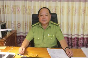 Tuyên Quang: Giữ màu xanh cho những cánh rừng ở Lâm Bình