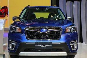 Subaru Forester 2019 lộ giá bán tại Việt Nam, Honda CR-V và Hyundai SantaFe không thích điều này