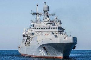 Nga cấp tốc loại bỏ thiết kế tàu đổ bộ Ivan Gren vì 'gây thất vọng lớn'