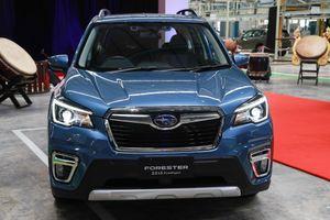 Chi tiết Subaru Forester sắp cập bến VN, giá dự kiến 1,1-1,3 tỷ