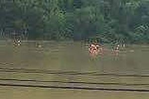 Phát hiện thi thể bệnh nhân 'mất tích' nổi trên sông