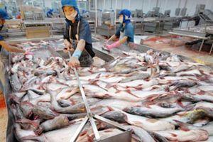 Hoa Kỳ nâng mức thuế chống bán phá giá với cá tra