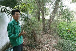 Vụ 300 xác thai nhi lẫn trong rác: Chủ tịch UBND tỉnh Cà Mau chỉ đạo nóng
