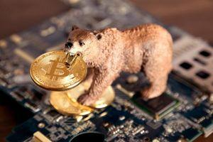 Bitcoin rơi xuống 5.100 USD