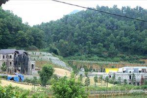 Sóc Sơn kiểm điểm trách nhiệm cán bộ liên quan đến 'xẻ thịt' đất rừng