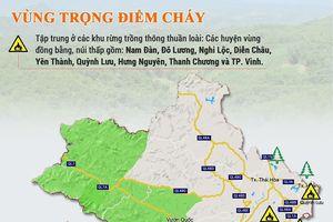 Nghệ An: Rình rập nguy cơ cháy rừng