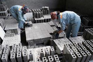 Sản xuất gạch không nung - Bài 2: Thay đổi công nghệ