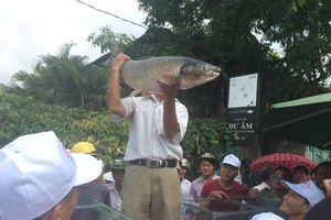 Người dân vùng di sản hào hứng với lễ hội 'Cá trắm trên sông Son'