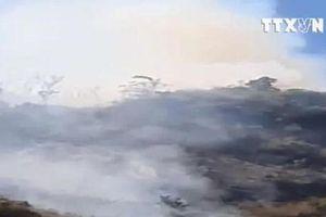 6 hecta rừng đặc dụng Đèo Cả tại Phú Yên bị thiêu rụi