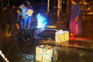 Phê chuẩn quyết định khởi tố vụ điện giật chết người đi xe máy