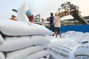 Philippines bỏ hạn ngạch nhập gạo, cơ hội lớn cho doanh nghiệp Việt