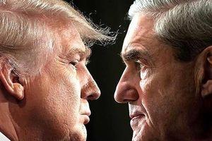 Ông Trump trả lời gì trong văn bản thẩm vấn gửi ông Mueller?