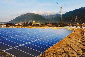 Tận thấy 'trang trại điện tái tạo' lớn nhất Việt Nam ở Ninh Thuận