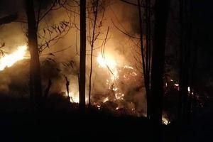 Quảng Ngãi: Cháy rừng keo, khiến một người tử vong
