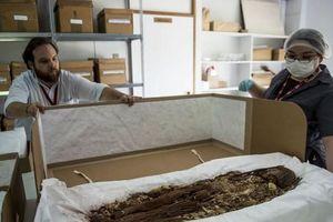 Không phải Ai Cập, xác ướp cổ xưa nhất thế giới xuất phát từ Chile