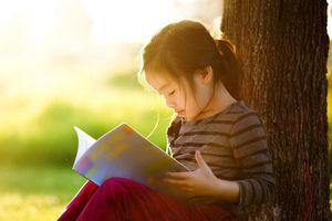 Sách và những giá trị của sách
