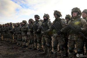 Cố vấn quân sự của Tổng thống đắc cử Zelensky 'chốt' thời hạn kiểm soát Donbass