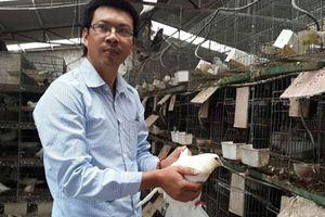 Hải Phòng: Bỏ đi tàu viễn dương về quê nuôi thập cẩm con đặc sản