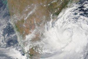 Ấn Độ dự phòng các biện pháp đối phó siêu bão Fani