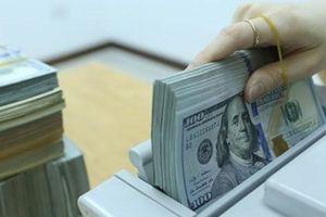 KBNN công bố tỷ giá hạch toán ngoại tệ tháng 5/2019