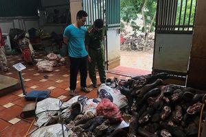 Hà Nội: Phát hiện hàng tấn chân bò và nội tạng gia súc không rõ nguồn gốc