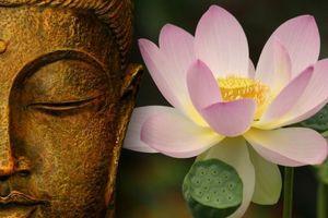Sống ở đời cứ học theo triết lý này của nhà Phật thì hạnh phúc luôn mỉm cười với bạn